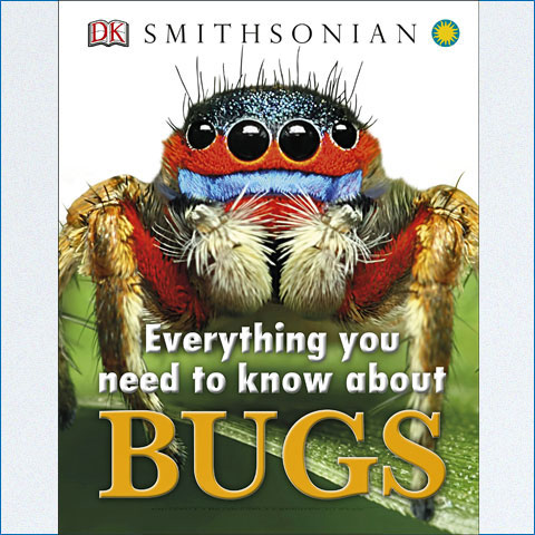 Everything_You_Need_to_Know_About_Bugs1