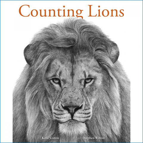 Counting_Lions2