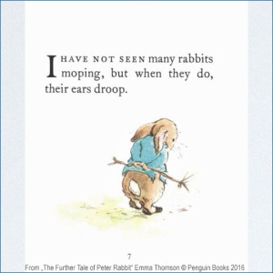 the_further_tale_of_peter_rabbit2