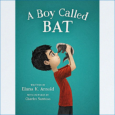 A_Boy_called_Bat