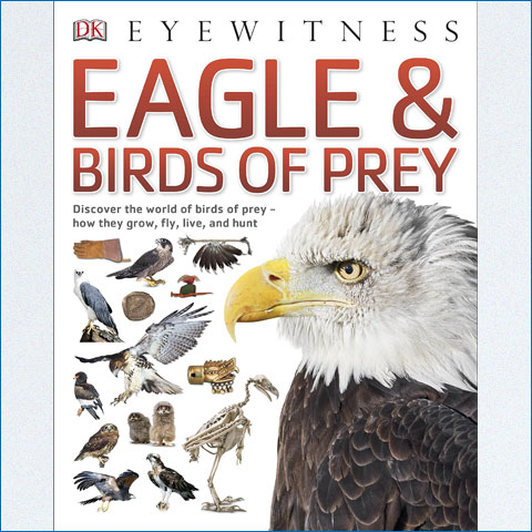 Eyewitness_Eagle_and_Birds_of_Prey