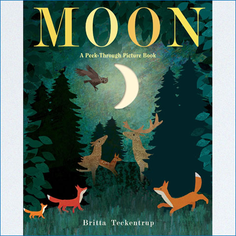 Moon_A_Peek_Through_Picture_Book