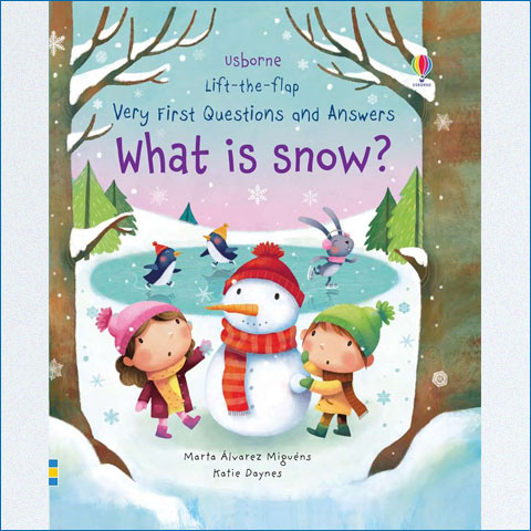 Lift-the-Flap_First_Questions_and_Answers_What_is_Snow