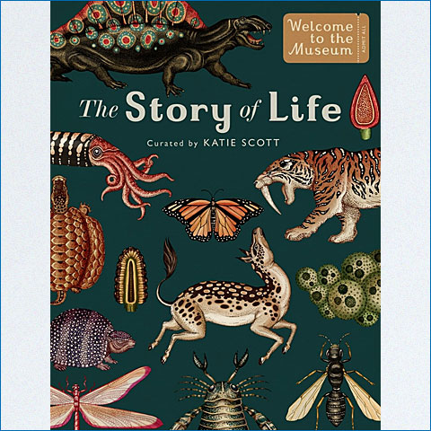 The_Story_of_Life
