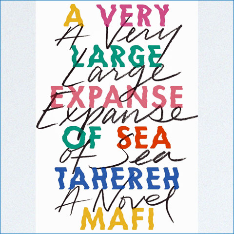 A_Very_Large_Expanse_of_Sea